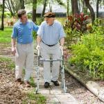 Middle-aged man and senior man with a walker strolling in garden.